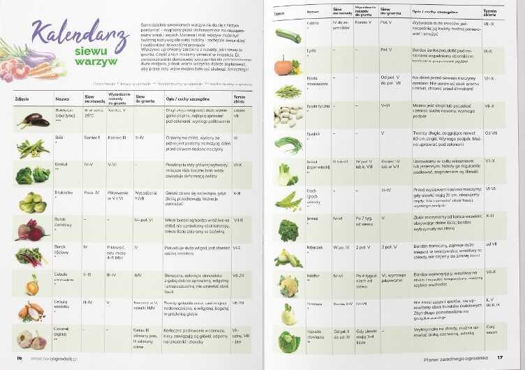Pielęgnacja ogrodu - kalendarz siewu warzyw