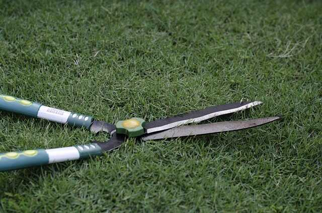 Narzędzia do pielęgnacji zieleni miejskiej